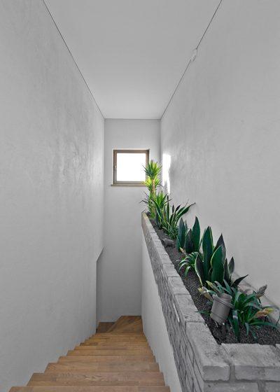 Ąžuoliniai masyvo laiptai, spalva 3417 Pilka